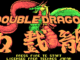 Double Dragon old DOS game