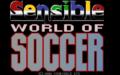 Sensible World of Soccer