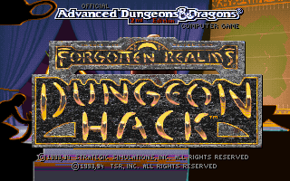 Dungeon Hack role playing dos game 1993