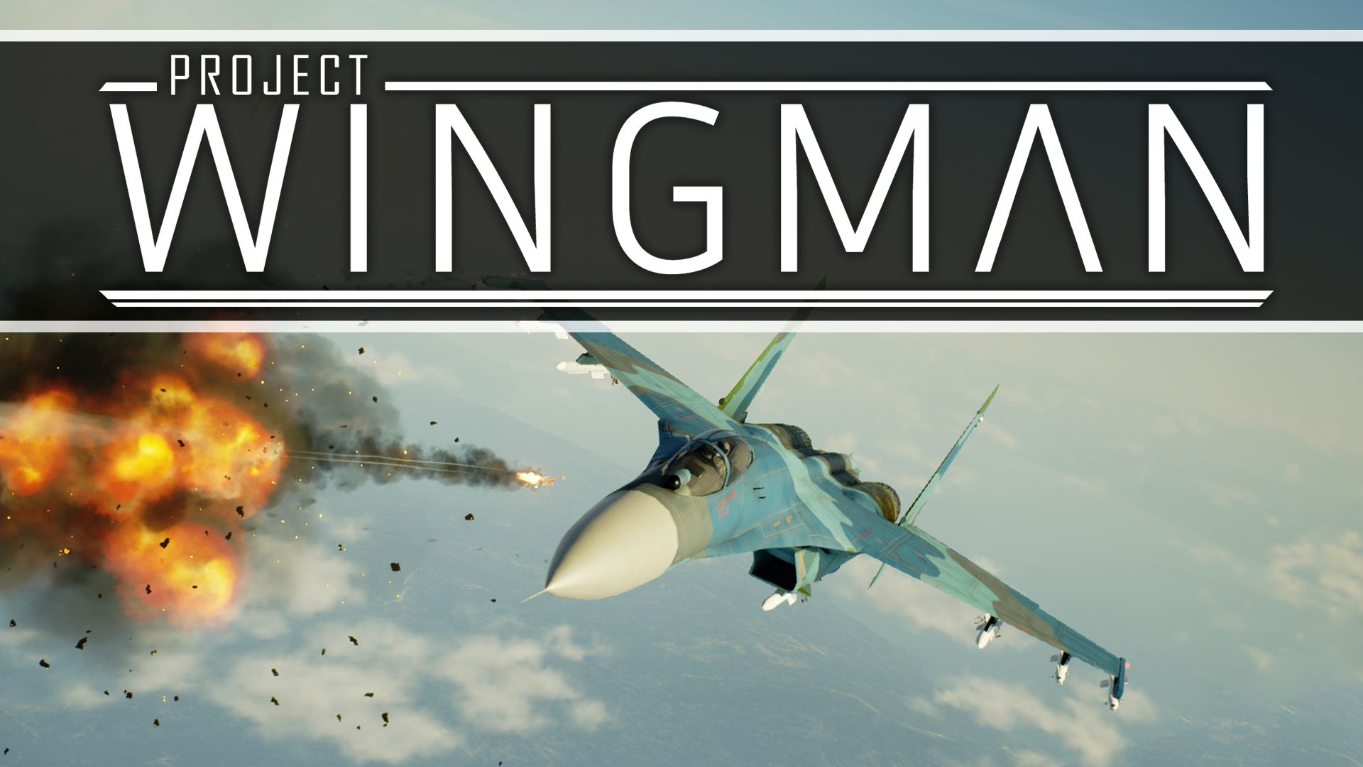Project Wingman simulation pc game 2020